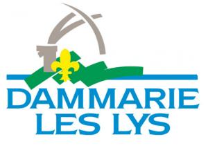 Alternative taxi à Dammarie-les-Lys VTC 77 pour vos transferts aéroports Roissy CDG ou Orly