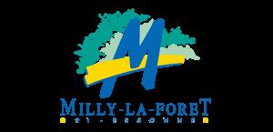 CHAUFFEUR PRIVÉ VTC MILLY-LA-FORÊT ALTERNATIVE TAXI 91