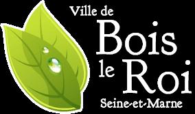 CHAUFFEUR PRIVÉ VTC BOIS-LE-ROI